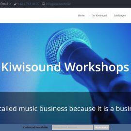 Musikerkollektiv-Workshops in Kooperation mit Kiwisound